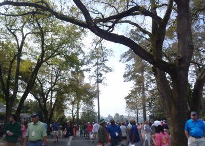 Augusta-course-2